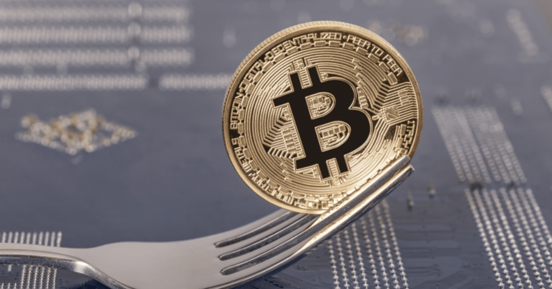 What was 2020 like for Bitcoin forks?